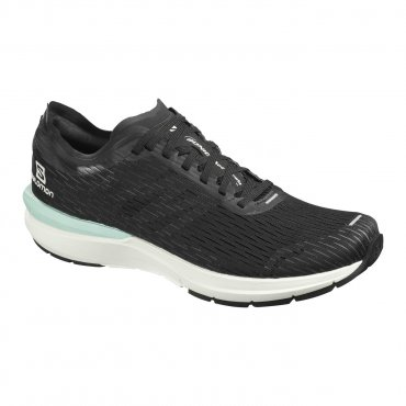 Salomon Sonic 3 Accelerate M Black/White/Quiet Shade L40924300